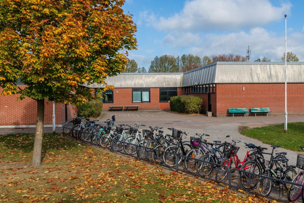 Bäckaskolan ligger i västra Trelleborg och är en grundskola årskurs F-6 med cirka 350 elever.