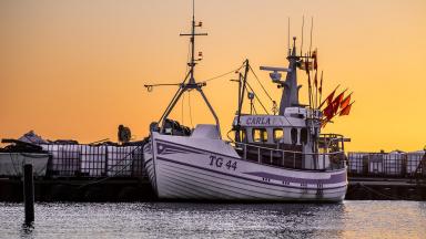 Fiskebåt i Skåres genuina hamn.