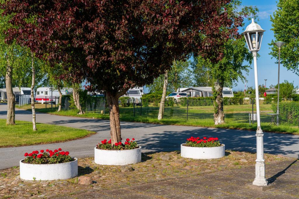 Campingplatser finns på Trelleborg Strand vid Dalabadet och på Skateholms Camping vid Beddingestrand.