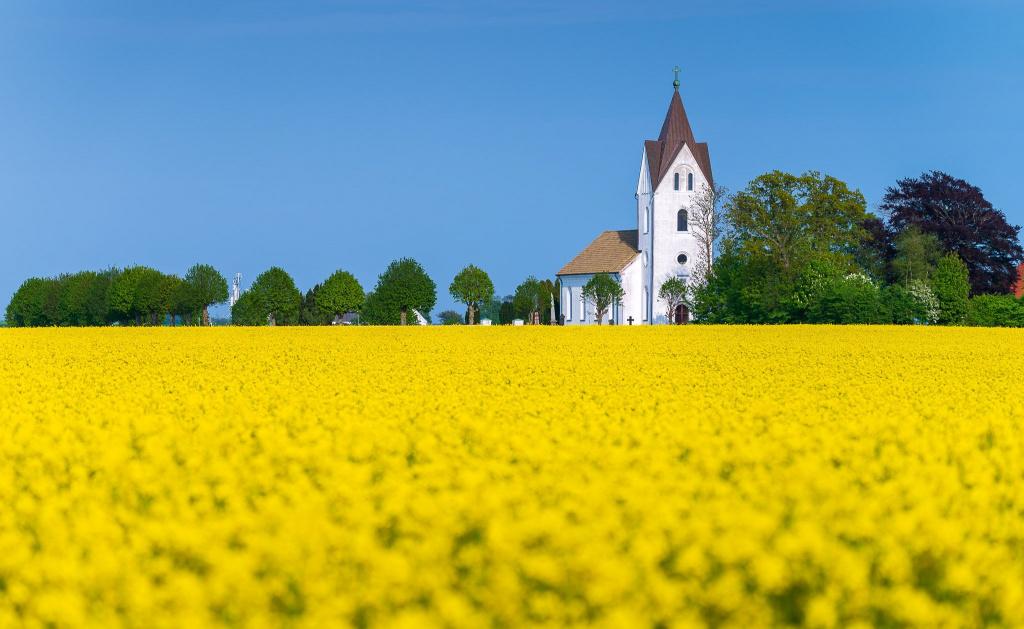 Trelleborg är Sveriges sydligaste stad. Trelleborg har en vacker landsbygd med många kyrkor.