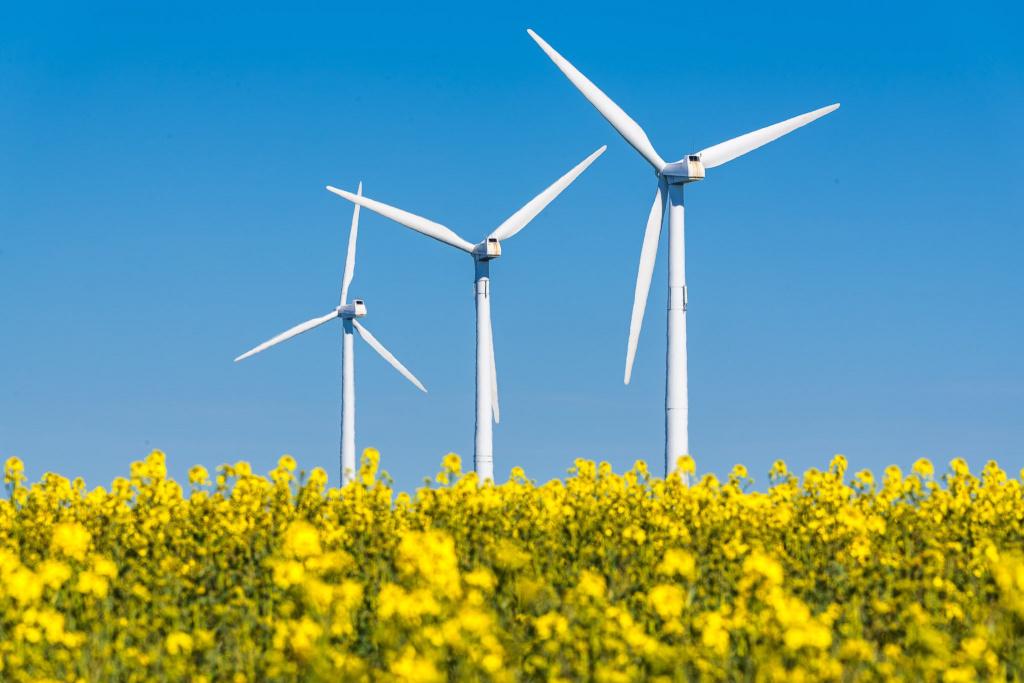 Arbete kring el och energi bedrivs på flera olika ställen inom kommunen.