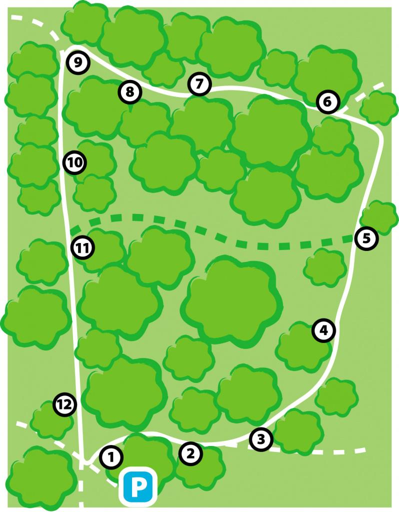 Karta över matteslingan