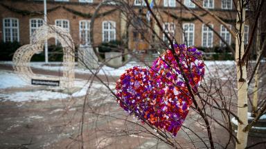 Pappershjärta hänger i ett av träden framför rådhuset.