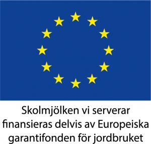 Bild på EU:s logotype