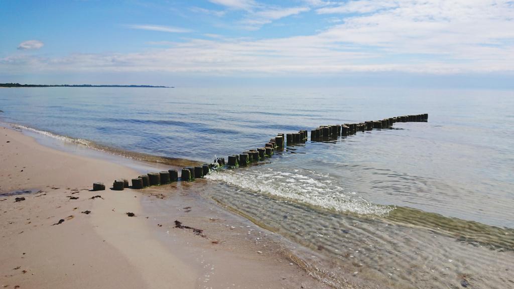 pärlan beddingestrand strand kustskydd